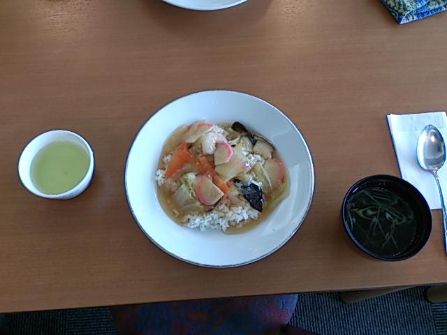 ジュニア3<br />  日目お昼ごはん♪